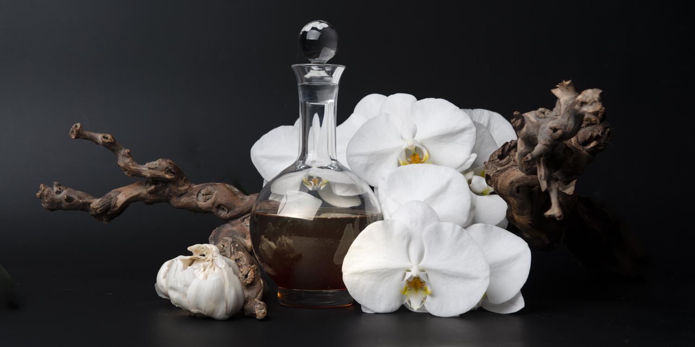 Phalaenopsis voor